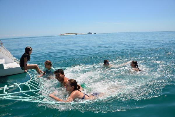 eco-adventure-blue-dolphin